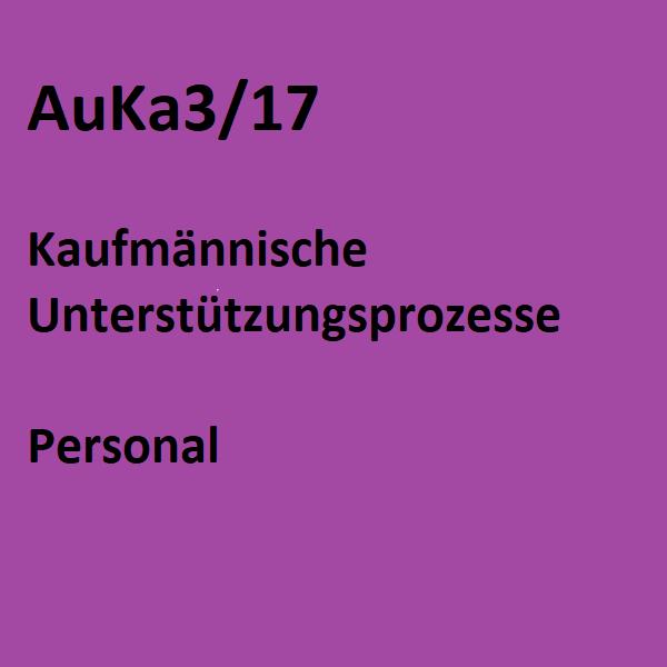 AuKa3/17 - Personal